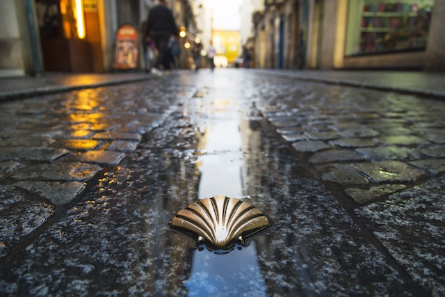 Come with us on the Camino to Santiago de Compostela