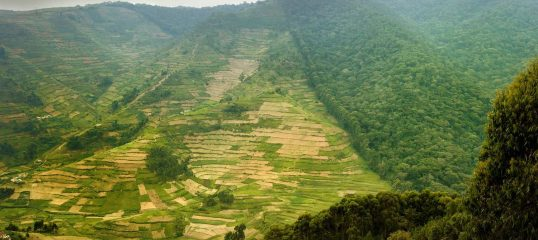Learn Kinyarwanda Rwanda Online - Level 1