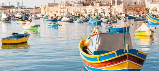 Maltese-featured-image