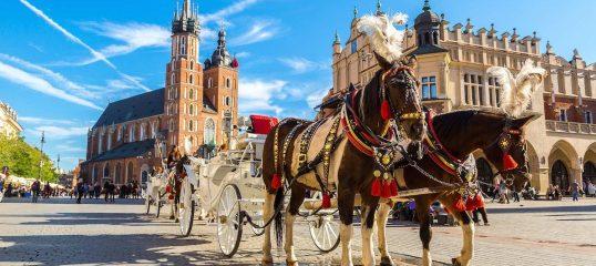 Learn Polish Online - (Business)